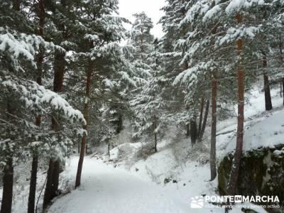 Ruta arroyo de la Chorranca; senderos españa;tarjeta federativa de montaña